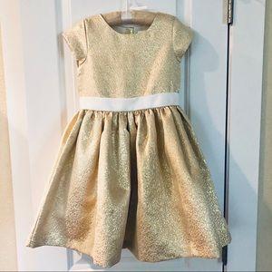 Gymboree girls holiday dress 👗